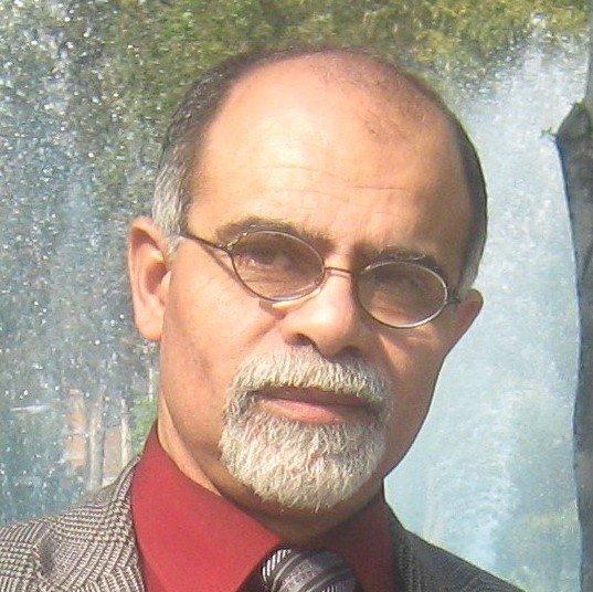 محمد علاء الدين عبد المولى