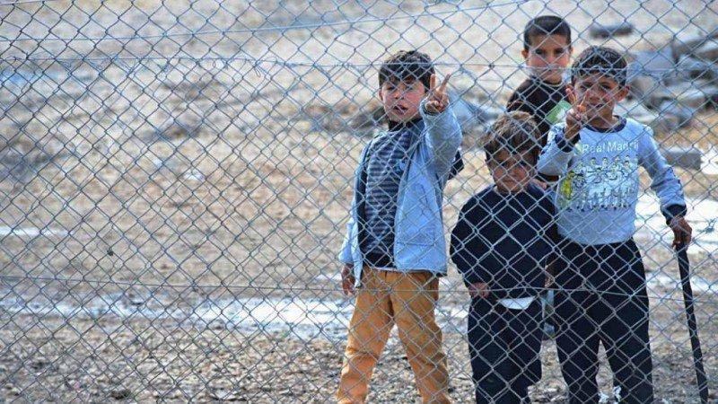 غياب فاعلية التطبيق القانوني للرعاية الصحية العقلية للسوريين