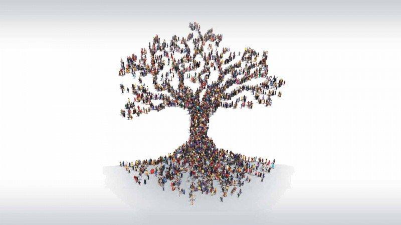 الانتقال الديمقراطي والمسألة التربوية: المدرسة والحرية والإبداع